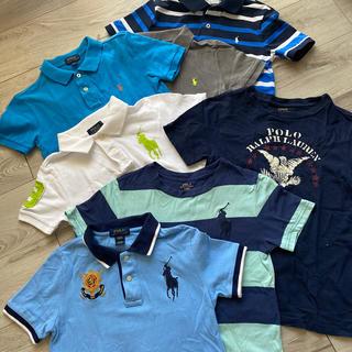 POLO RALPH LAUREN - ポロラルフローレン、男の子130センチ、Tシャツポロシャツ7点セット