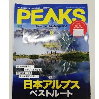 PEAKS 2020年 06月号,アルプストレッキングサポートBOOK2018