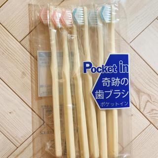 奇跡の歯ブラシ 大人用 6本セット