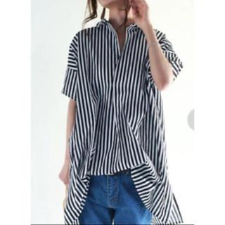 アンティカ(antiqua)の美品 アンティカ 半袖ストライプシャツ ブラック(シャツ/ブラウス(半袖/袖なし))