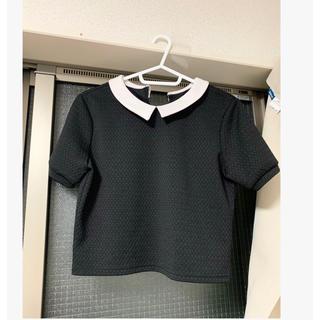 エモダ(EMODA)のemoda 襟付き ショート丈 トップス 黒 ブラック sly chico gu(Tシャツ(半袖/袖なし))