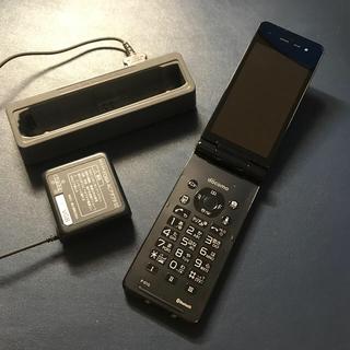 エヌティティドコモ(NTTdocomo)のdocomo P-01G ガラケー(携帯電話本体)