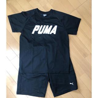 PUMA - プーマ セットアップ