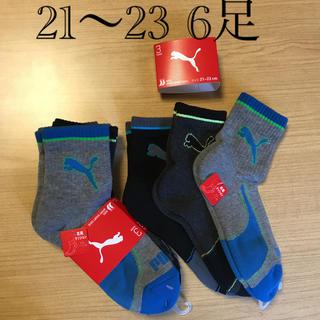 PUMA - 21 22 23 6足 プーマ ソックス 靴下 キッズ 男の子