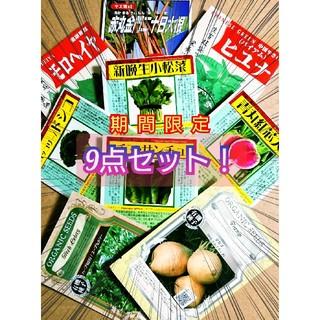 固定種 9点セット 野菜の種 ハーブの種 家庭菜園 水耕栽培 (野菜)