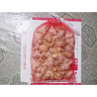 ジャンボニンニク(野菜)