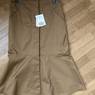 スピックアンドスパンノーブル(Spick and Span Noble)のチノストレッチ裾フレアーSK(ロングスカート)