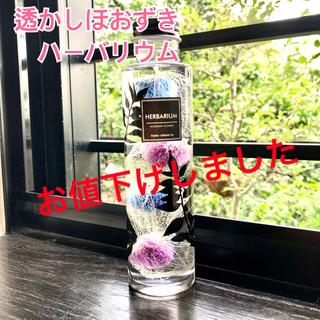 ハーバリウム《透かしほおずき4個入り・青紫系》円柱瓶Mサイズ(その他)