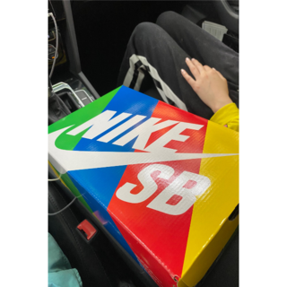 ナイキ(NIKE)のBEN&JERRY'S x NIKE SB DUNK LOW PRO(スニーカー)