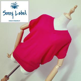 サニーレーベル(Sonny Label)のアーバンリサーチ ショートスリーブプルオーバー  ピンク(ニット/セーター)