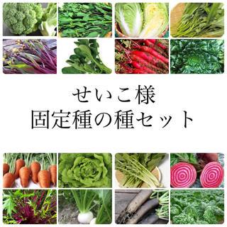 せいこ様 ★伝統野菜★固定種の種セット(野菜)