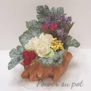 Power su pot(フェイクフラワー)(その他)
