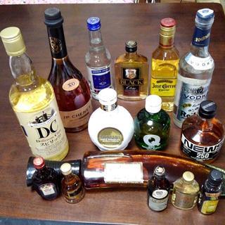 世界各国の酒 ブランデー ウイスキー ウォッカ リキュール ラム ワイン