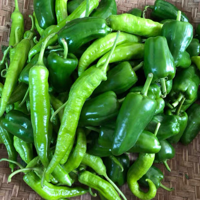 無農薬新鮮野菜果物セット 10種類80サイズ 食品/飲料/酒の食品(野菜)の商品写真
