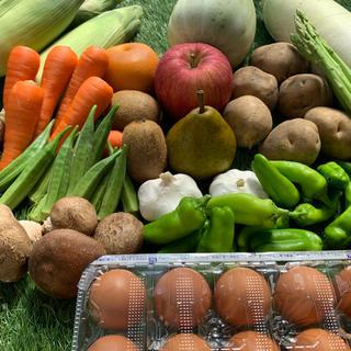無農薬新鮮野菜果物セット 10種類80サイズ