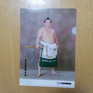 白鵬 クリアファイル(相撲/武道)