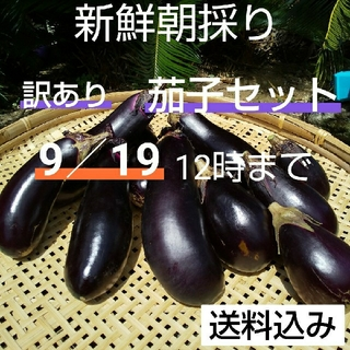 野菜箱詰め【訳あり茄子セット】農薬不使用(野菜)