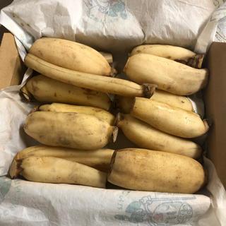 徳島県シャキシャキ蓮根 細1kg(野菜)
