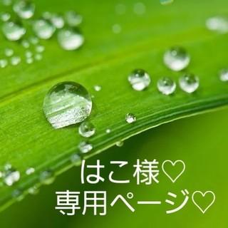 はこ様専用ページ♡(野菜)