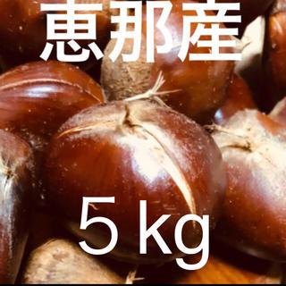 【秋の味覚】恵那  栗 Lサイズ以上5㎏  無農薬(野菜)