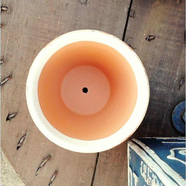 F0918a⑩ ワーゲン鉢B☆シュガーピンク 1個 ハンドメイドのフラワー/ガーデン(その他)の商品写真
