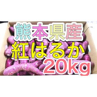 熊本県産紅はるか20kg(野菜)