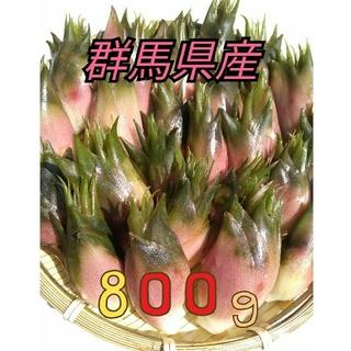 群馬県産 みょうが ミョウガ 茗荷 800g(野菜)