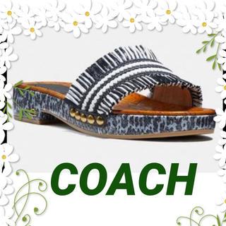 COACH - COACH    【コーチ】サンダルブレーデン美品✨