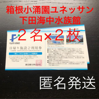 箱根小涌園ユネッサンパスポート入場引換券 利用券2枚(遊園地/テーマパーク)