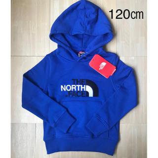 THE NORTH FACE - 【海外限定】ノースフェイス パーカー ブルー