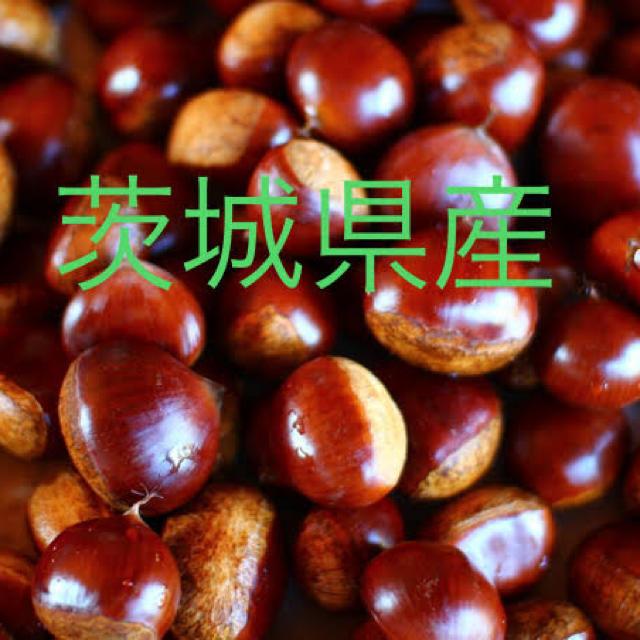 茨城県産 栗 2Lサイズ1.3キロ 食品/飲料/酒の食品(野菜)の商品写真