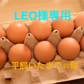 LEO様専用 平飼いたまご40個(野菜)