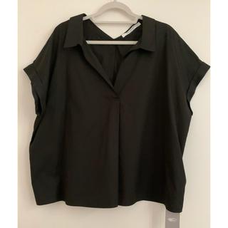 ビームス(BEAMS)のRay BEAMSバックボタンスキッパーシャツ新品(シャツ/ブラウス(半袖/袖なし))