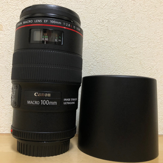Canon - Canon EF100F2.8Lマクロ IS USM  美品
