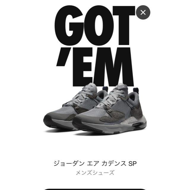 NIKE(ナイキ)のNike Fragment Jordan AIR CADENCE SP 27cm メンズの靴/シューズ(スニーカー)の商品写真