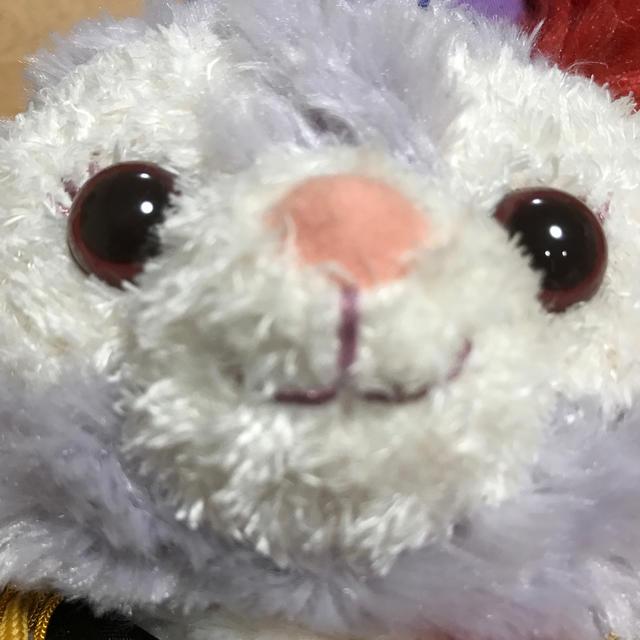 ステラ・ルー(ステラルー)のステラ☆ルーマーチング衣装ぬいぐるみ エンタメ/ホビーのおもちゃ/ぬいぐるみ(ぬいぐるみ)の商品写真