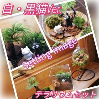 特R ♥白・黒猫 Ver. 苔・木の実テラリウムキット(^_^)(その他)