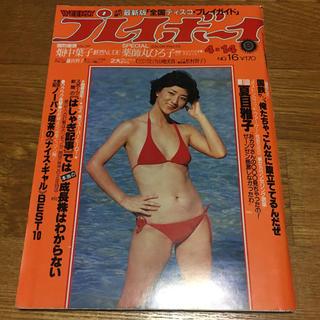 ショウガクカン(小学館)の週刊プレイボーイ 昭和56年4月14日号(アート/エンタメ/ホビー)