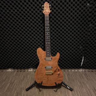 sugi guitar