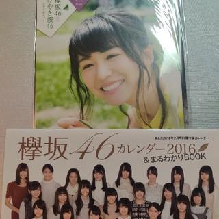 欅坂46(けやき坂46) - 欅坂46 カレンダー、クリアファイル、ポスター
