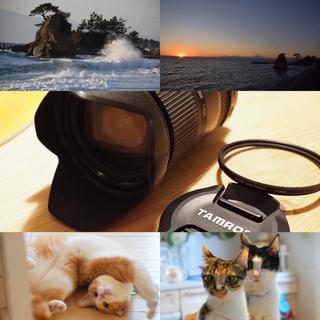 TAMRON - 【美品•特価】TAMRON 16-300mm 高画質ズーム フィルター付き