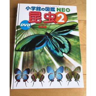 ショウガクカン(小学館)の小学館の図鑑NEO 昆虫2 ドラえもん DVD付(絵本/児童書)
