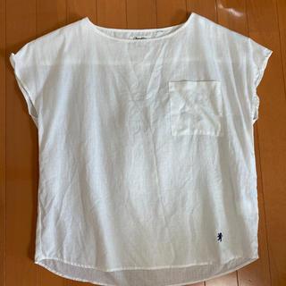 ジムフレックス(GYMPHLEX)の美品 ジムフレックス プルオーバー(シャツ/ブラウス(半袖/袖なし))