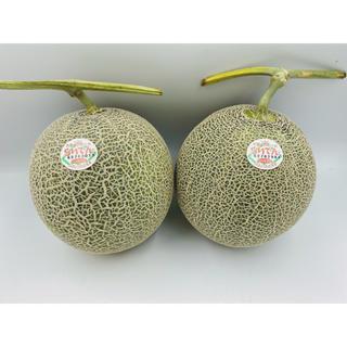 北海道産 赤肉らいでんレッドメロン🍈2玉 1玉約1.7kg前後(フルーツ)