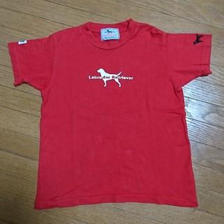 ラブラドールリトリーバー(Labrador Retriever)の120cm ラブラドールレトリバー キッズ Tシャツ 女の子 男の子(Tシャツ/カットソー)
