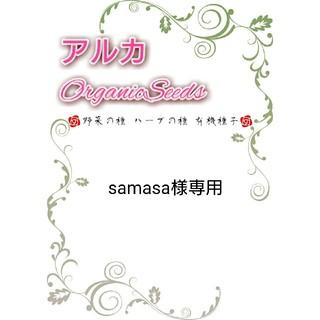 samasa様専用 野菜の種(野菜)