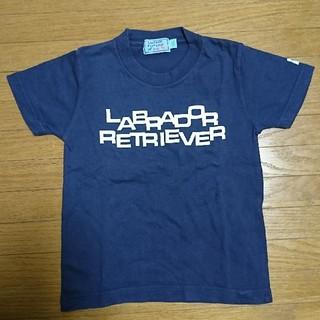 ラブラドールリトリーバー(Labrador Retriever)の100cm ラブラドールレトリバー Tシャツ キッズ 男の子 女の子③(Tシャツ/カットソー)
