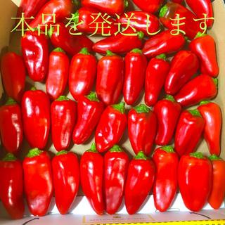 カラーピーマン赤色のみmamiCU18さま専用出品(野菜)