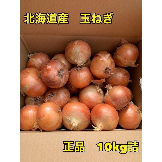 北海道 美幌町令和2年産玉葱 食品/飲料/酒の食品(野菜)の商品写真