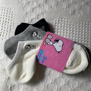 SNOOPY - 《新品》スヌーピー   靴下  3足セット  ②  刺繍